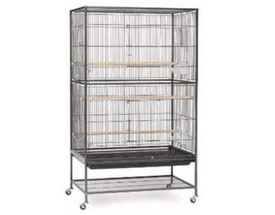 Prevue Hendryx Pet Products Wrought Iron Flight Cage review: